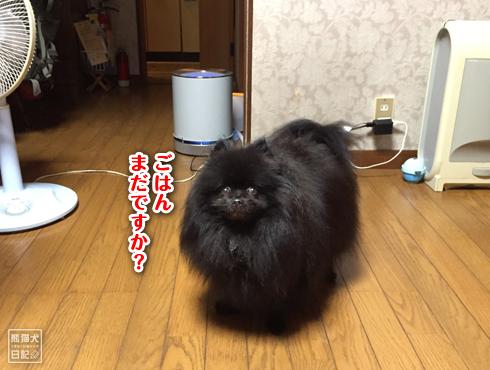 20180930_動物たちの寒さ感覚2
