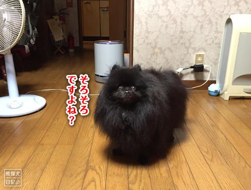 20180930_動物たちの寒さ感覚5