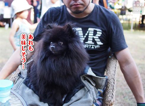 20181030_謎のお祭り8