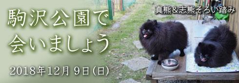 20181110_駒沢公園で会いましょうバナー