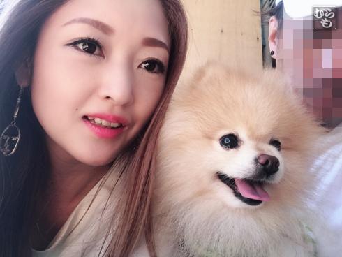 20181111_熊猫犬ファミリーの犬2
