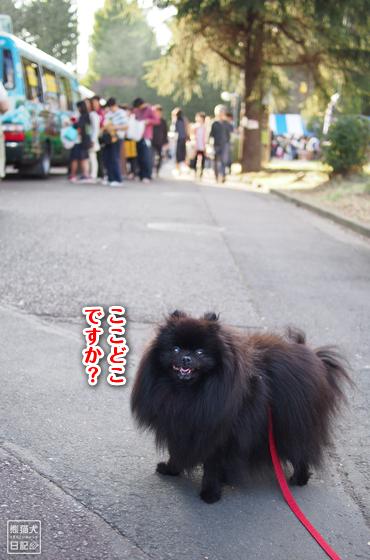 20181203_学園祭3