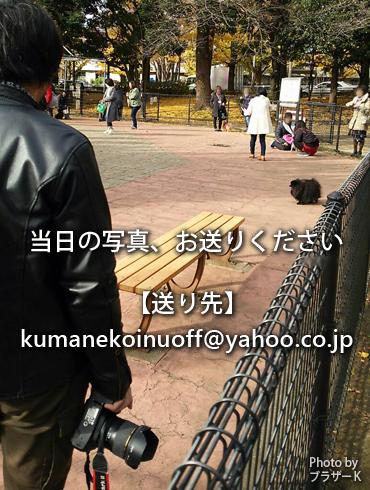 20181211_御礼9