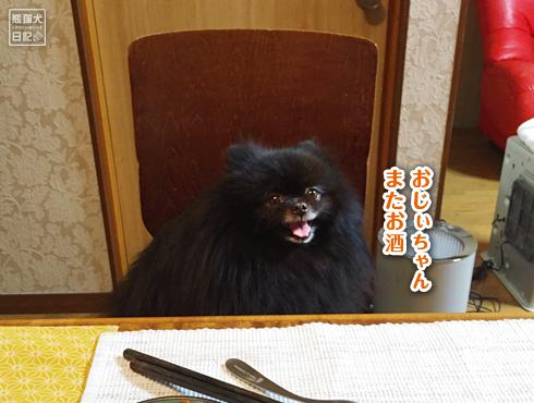 20181227_志熊の来訪5
