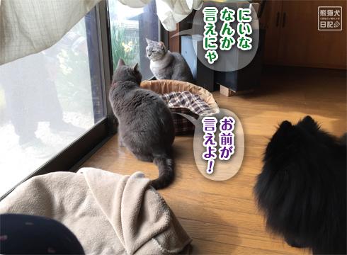 20181230_お婆ちゃん4