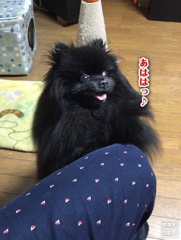 20190112_おねだり7