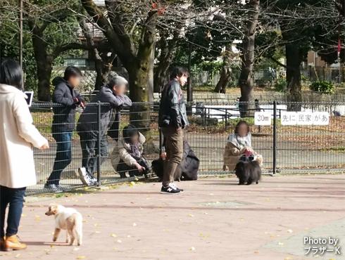 20190115_駒沢公園5