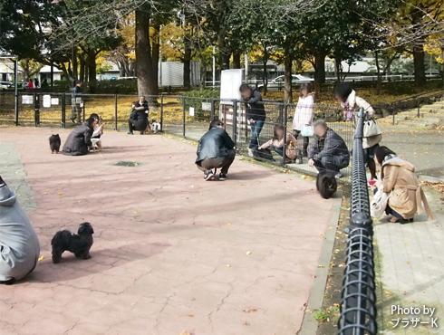 20190115_駒沢公園6