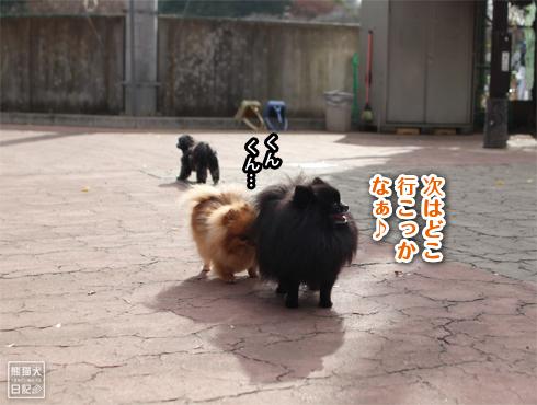 20190118_駒沢公園5