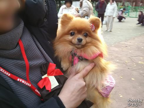 20190131_駒沢公園6
