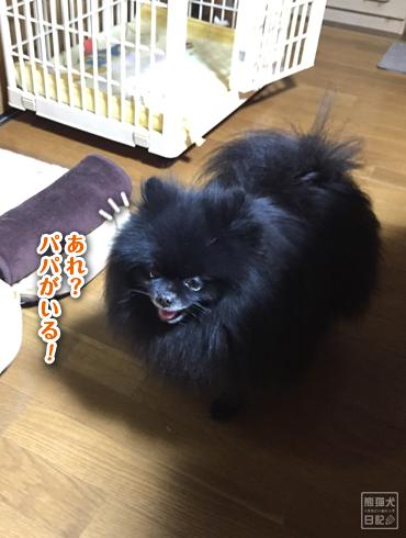20190314_再会7