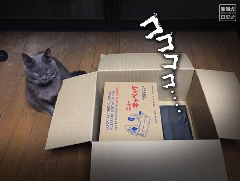 20190318_キャベツ千切り5