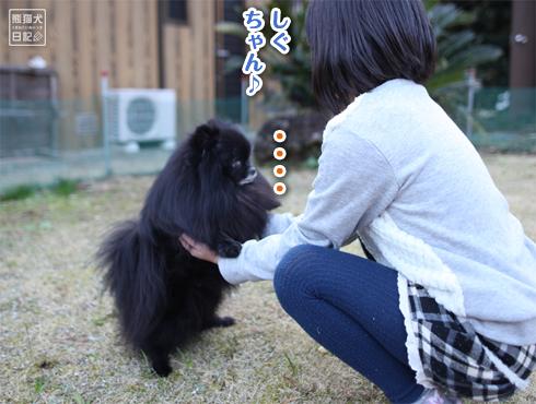 20190327_真熊と志熊5