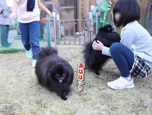 20190327_真熊と志熊6