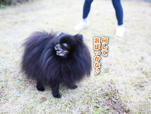 20190327_真熊と志熊2