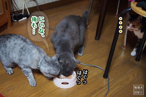 20190411_誕生祝い裏話6