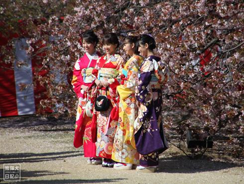 20190414_桜を見る会3