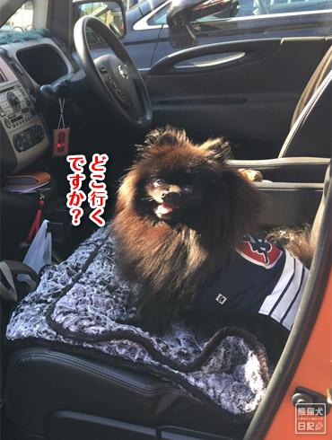 20190419_久しぶりの場所3