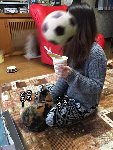 20190530_稚葉5