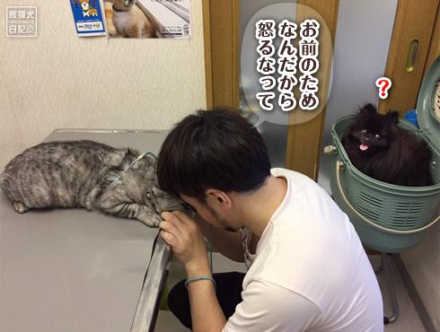 20190613_寿喜ワクチン6