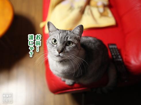 20190711_寿喜1