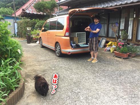 20190826_真熊と寿喜9