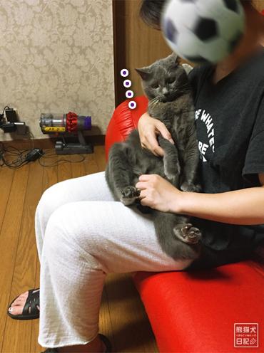 20190828_石像猫7