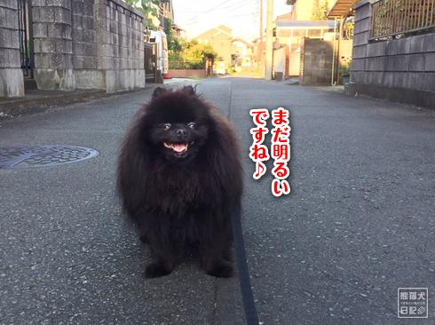 20190829_まぐ散歩2