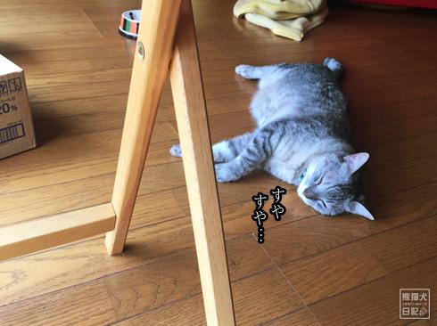 20190901_動物たちの寝起き6
