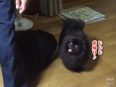 20190902_真熊と志熊2