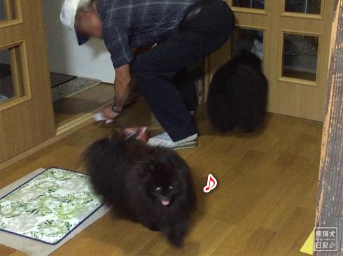20190902_真熊と志熊1