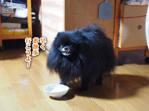 20190910_志熊5