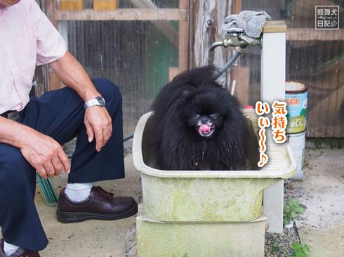 20190924_真熊と志熊6