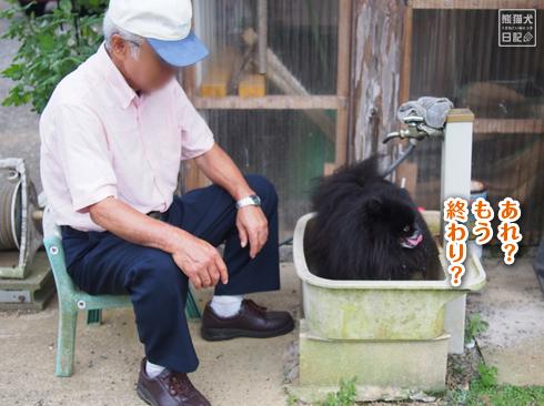 20190924_真熊と志熊5