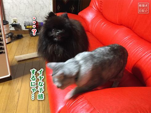 20190929_真熊&寿喜6