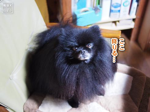 20191005_さよなら志熊8