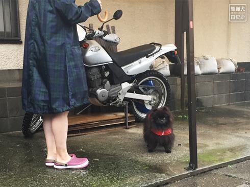 20191013_台風当日8
