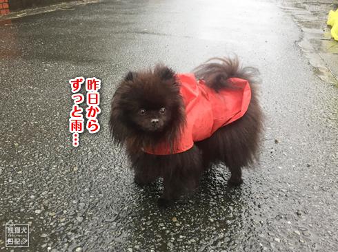 20191013_台風当日5