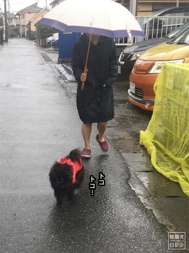20191013_台風当日4