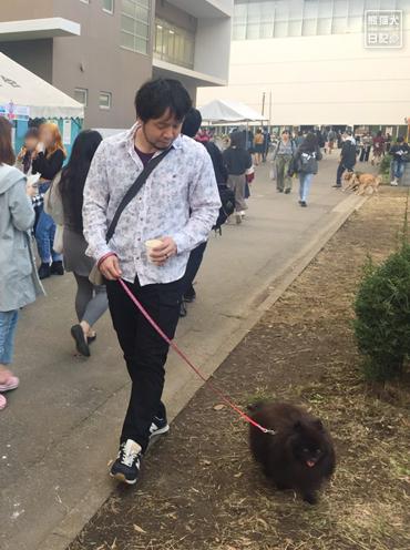20191029_おあずけ真熊2