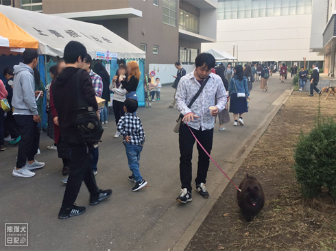 20191029_おあずけ真熊1