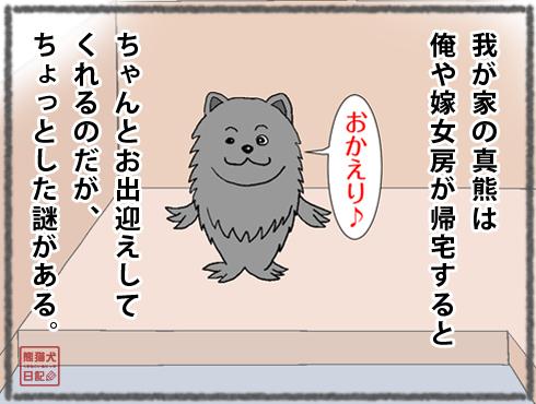 20191118_真熊1