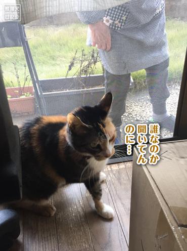20191124_お婆ちゃん7