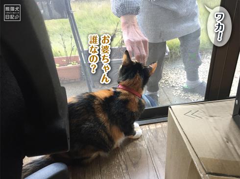 20191124_お婆ちゃん6