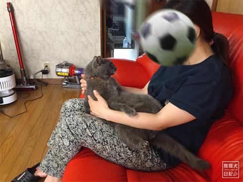 20191130_石像猫2