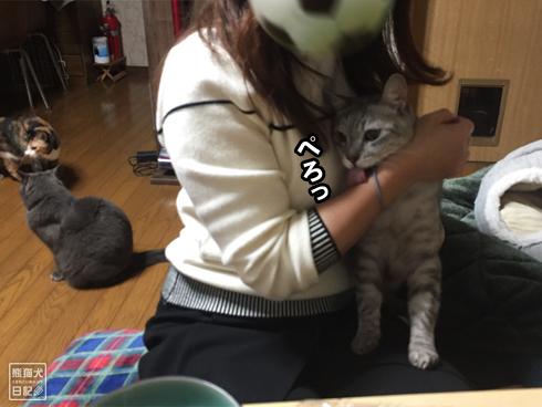 20200111_舐め猫7