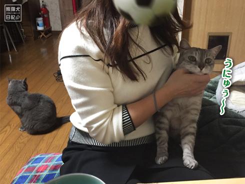 20200111_舐め猫3