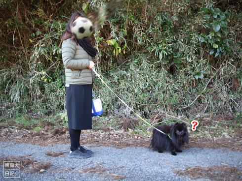 20200129_志熊ごはん6