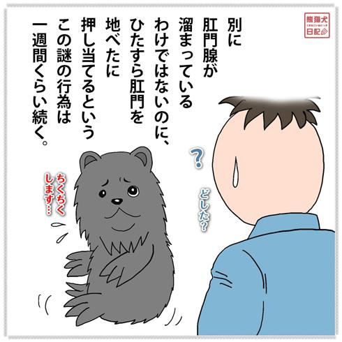 20200204₋真熊バリカン4