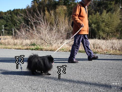 20200210₋長距離散歩2